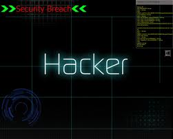 Hacking of Developer Portal