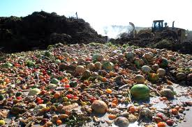 Food Waste in the World